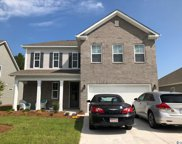 301 Cypress Springs Way, Little River image