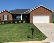 2844 SOUTHWINDS CIRCLE, Sevierville image