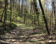 Lot 74 Black Rock Creek, Cherokee (Jackson Co.) image