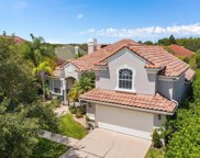 14499 Dover Forest Drive, Orlando image