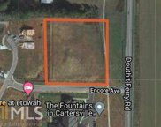 901 Douthit Ferry Rd, Cartersville image