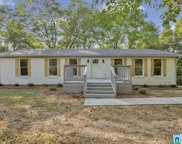 3873 Red Valley Rd, Remlap image