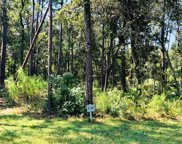 Lot 46 Lantana Circle, Georgetown image