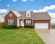 2903 Wills Ct, Spring Hill image