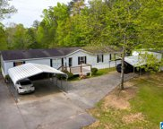 3820 Valley Ford Road, Adger image