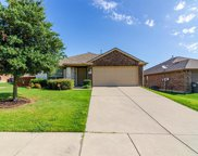1325 Lake Trail Court, Wylie image
