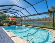 20426 Black Tree Ln, Estero image