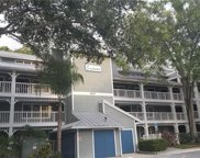 2577 Dolly Bay Drive Unit 303, Palm Harbor image