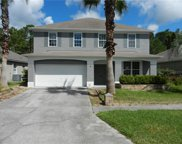12525 Sparkleberry Road, Tampa image
