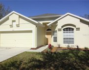 8202 Canary Canyon Way, Tampa image
