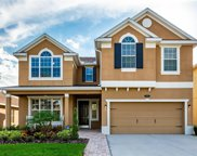 19318 Water Maple Drive, Tampa image