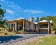 390 Elmgreen Lane, Evergreen image