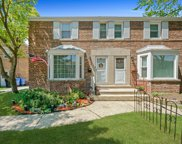 3952 N Merrimac Avenue, Chicago image