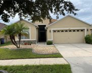 8722 Sandy Plains Drive, Riverview image