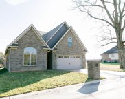 207 Zion Cove Lane, Englewood image