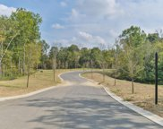 36 Shakes Creek Dr, Fisherville image