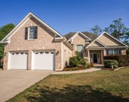 4210 Berberis Way, Wilmington image