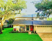 16642 Vallely Drive, Tampa image