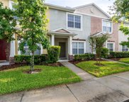 30352 Elderwood Drive, Wesley Chapel image