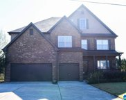945 Brookhaven Drive, Odenville image