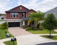 19310 Stone Fence Place, Tampa image