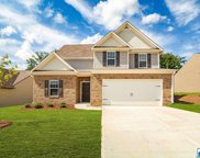 4321 Winchester Hills Way, Clay image