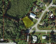 801 Tippins  Terrace, Immokalee image