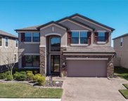 1818 Nature View Drive, Lutz image