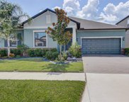 13444 White Sapphire Road, Riverview image