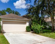 11290 Beebalm Circle, Lakewood Ranch image