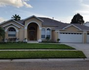 16150 Palmetto Hill Street, Clermont image