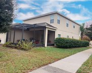 702 Lake Tarpon Way, Groveland image