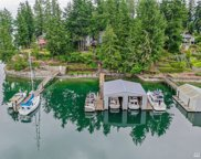 240 Shorewood Ct, Fox Island image