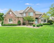 5423 Switch Grass Lane, Naperville image