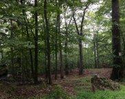 Cherry Tree Hill, Warwick image