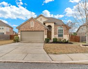 5419 French Willow, San Antonio image