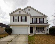 165 Wildberry Lane, Goose Creek image