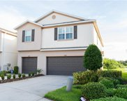 8947 Turnstone Haven Place, Tampa image