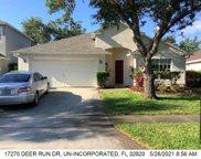 17270 Deer Run Drive, Orlando image
