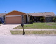 4539 Alligator Drive, New Port Richey image