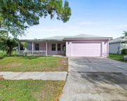 725 CALICO JACK WAY, Green Cove Springs image