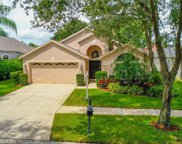 11722 Derbyshire Drive, Tampa image