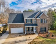111 Painted Bunting  Drive, Troutman image