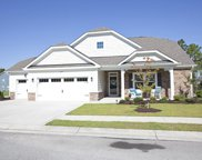 6020 Otter Tail Trail, Wilmington image