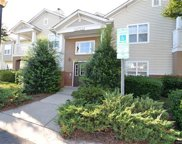 16915  Doe Valley Court, Cornelius image