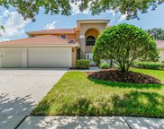 18113 Courtney Breeze Drive, Tampa image