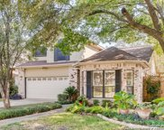 14206 Red Maple Wood, San Antonio image