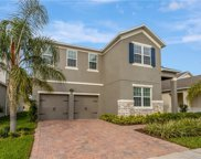 15373 Murcott Harvest Loop, Winter Garden image