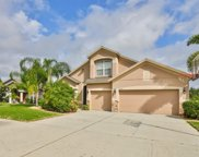 11029 Rockledge View Drive, Riverview image