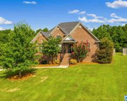 675 Ridgefield Way, Odenville image